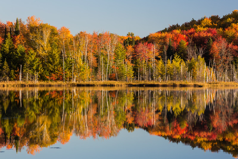 Fall color along Council Lake. Hiawatha National Forest, MI<br /> <br /> MI-120930-0422