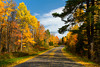 A highway with fall foliage color through the forests of Michigan's Upper Peninsula.