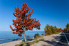 The Lake Superior shore with fall foliage color in the Upper Penninsula, Michigan, USA.