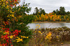 A marsh with fall foliage color in the Upper Peninsula of Michigan, USA.