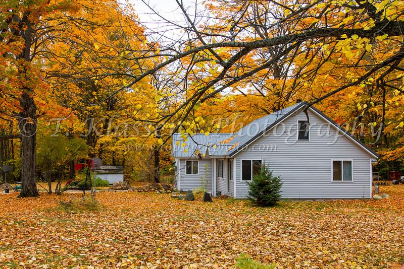 A rural Upper Peninsula home with fall foliage color, Michigan, USA.