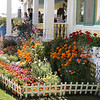 At Mackinaw Island