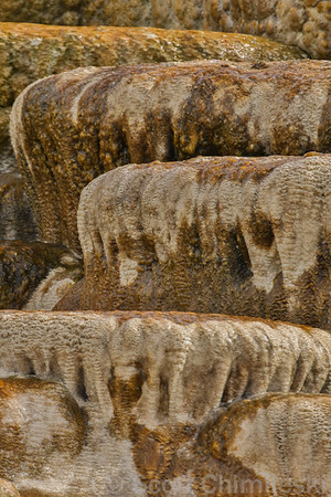 Mammoth Hot Springs No. 1