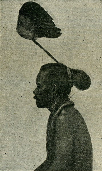 "This image is from the ""Scientific American Supplement"" of 26 August 1899, with the caption:  ""Male Aborigine of Ruk Islands"""