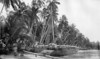 """Marshall Islands canoe (photograph from the collection of Rev. C.F. Rife in 'On Sea Charts Formerly Used in the Marshall Islands, with Notices on the Navigation of These Islanders in General' by Captain Winkler of the German Navy in """"Smithsonian Report, 1899"""")"""
