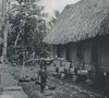 The house of the first family in Ngardims; the man is carrying gourds on a palm branch (Augustin Kramer, 1909)
