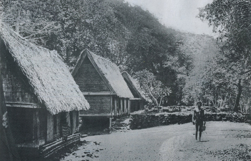 The farm buildings of the third clan in Melekeok (Augustin Kramer, 1909)