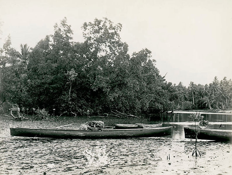 Kosrae, 1899:  Henry Clifford Fassett photograph of an outrigger canoe loaded with bananas