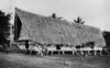 A large Palauan men's house, moved by the German government from the village, where it originally stood, to a site opposite the German governor's office on Koror (Junius B. Wood, 1921)