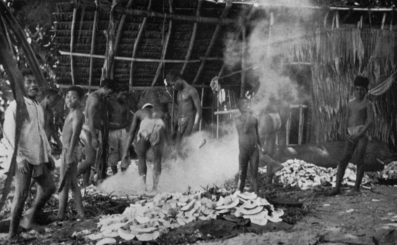 Men and boys of Chuuk helping to prepare food for a feast; peeled and quartered breadfruit in the foreground, 1921 (Junius B. Wood)