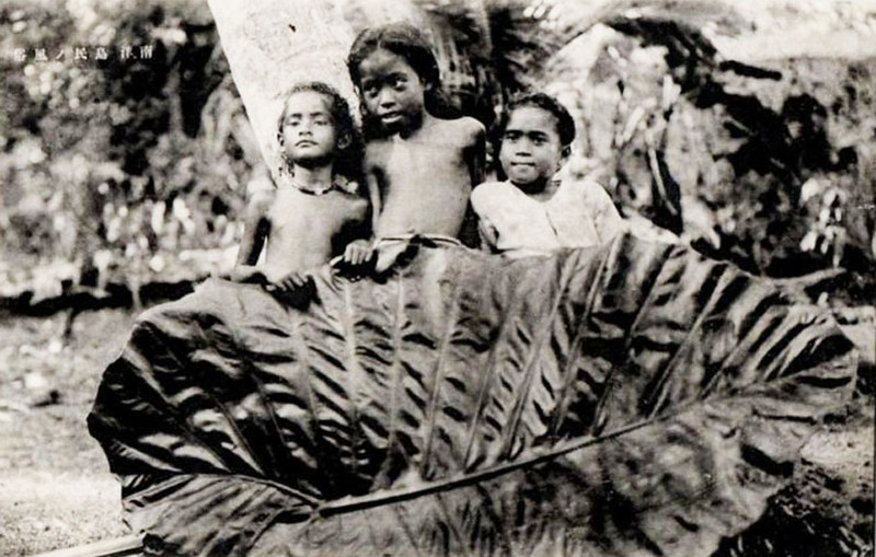 Three children and one very large taro leaf (photograph from the period of Japan's South Seas Mandate)