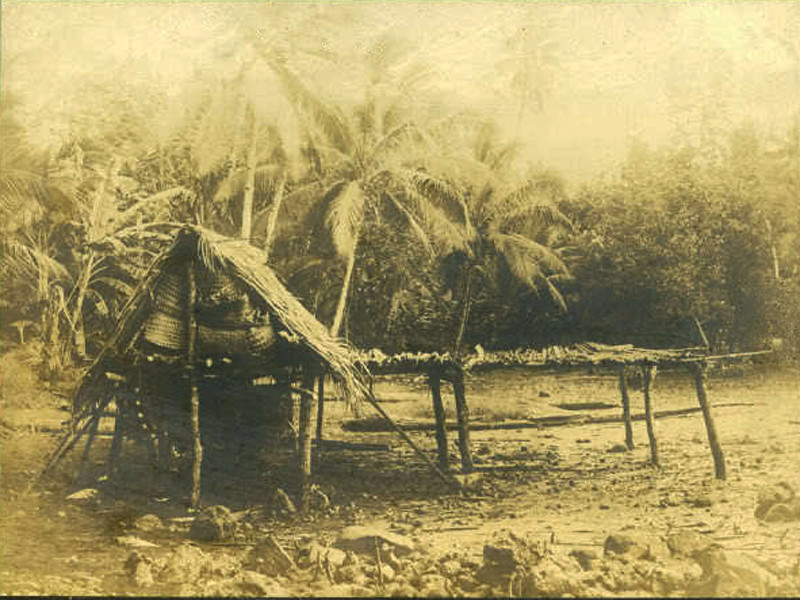 Kosrae, 1899:  Henry Clifford Fassett photograph of a copra shed and drying rack, Fengal Village, Port Lottin
