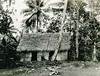 Kosrae, 1899:  Henry Clifford Fassett photograph of a house with a thatch roof and palm-slat walls