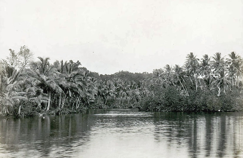 Pohnpei, 1899:  Henry Clifford Fassett's photograph of the veiw upstream from Ronkiti Village