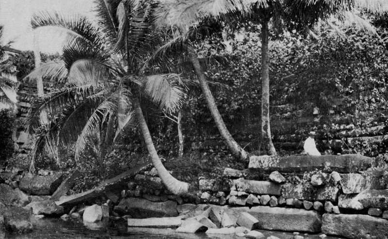 A Western visitor poses outside a portion of the walls surrounding Pohnpei's Nan Madol (Junius B. Wood, 1921)