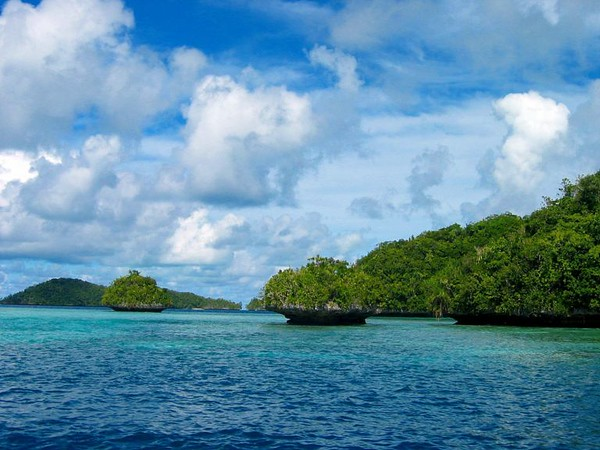 The Rock Islands of Palau boast over 300 unique limestone islands that are like mushroom heads protruding out of the water...