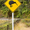 Close-up of kiwi road sign