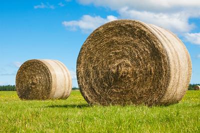 Two big hay bale rolls in a green field