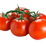 Fresh vine ripened tomatoes