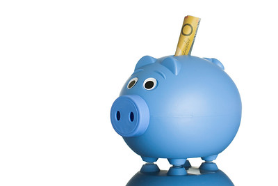 Blue piggy bank with Australian dollars