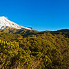 Panorama of Mt Egmont or Mt Taranaki