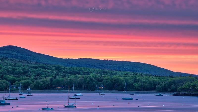 Camden Cove Sunset