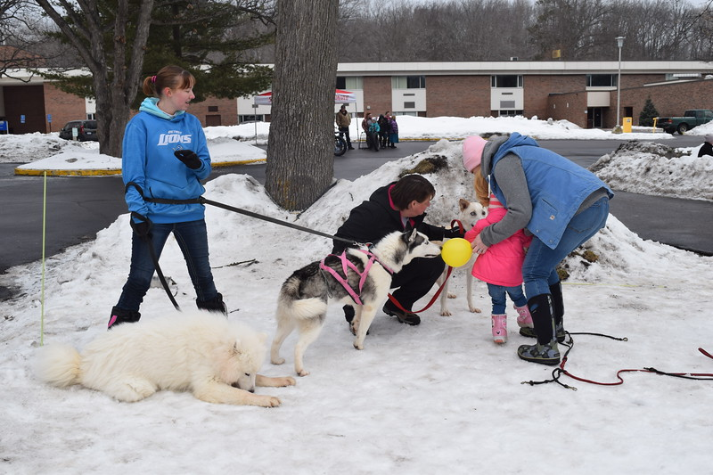 Samantha Peariso (left), her mother, Samantha Peraiso (middle) and Rachel Magnus introduce 2-year-old Molly Magnus to Bean, an Alaskan husky, at the MMCC Winter Blast.