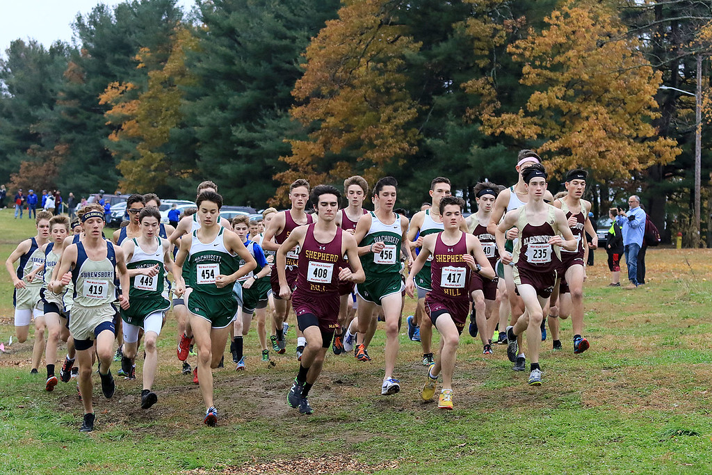 . Mid-Wach A boys cross country championships where held at Hollis Hills Farm in fitchburg on Thursday afternoon.The start of the race. SENTINEL & ENTERPRISE/JOHN LOVE