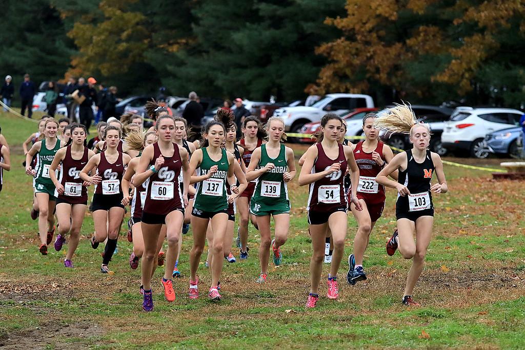 . Mid-Wach B girls cross country championships where held at Hollis Hills Farm in fitchburg on Thursday afternoon. The start of the race. SENTINEL & ENTERPRISE/JOHN LOVE