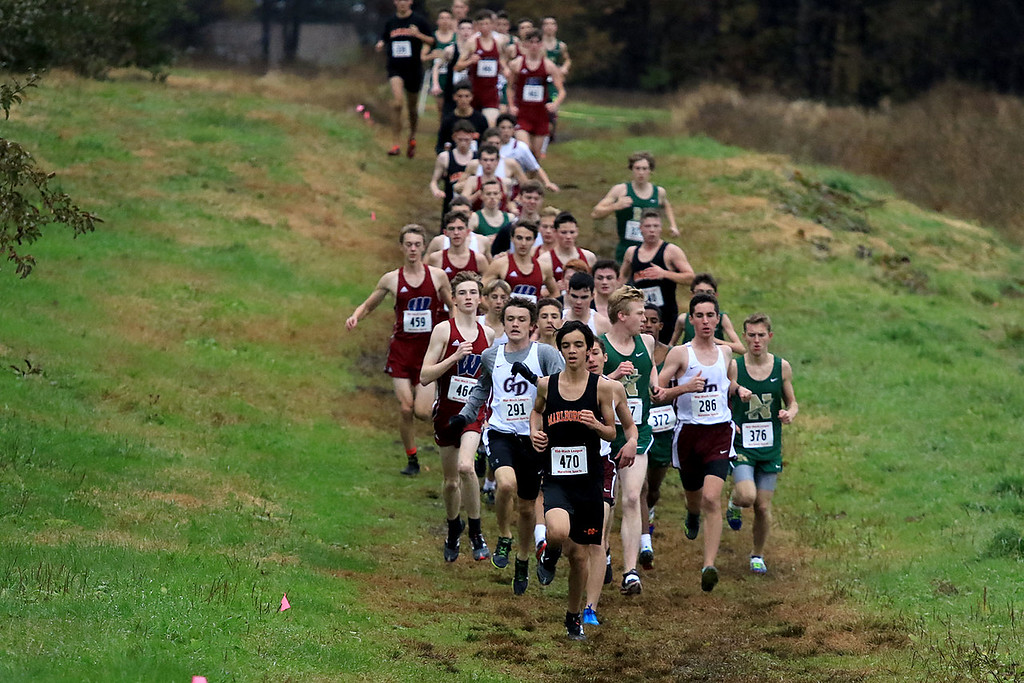 . Mid-Wach B boys cross country championships where held at Hollis Hills Farm in fitchburg on Thursday afternoon. They run the first loop of the race around the farm.  SENTINEL & ENTERPRISE/JOHN LOVE
