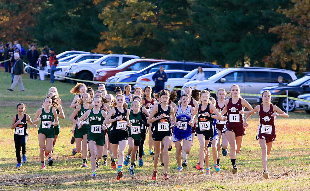 . Mid-Wach E girls cross country championships was held at Hollis Hills Farm in Fitchburg on Wednesday afternoon, October 31, 2018. The start of the race. SENTINEL & ENTERPRISE/JOHN LOVE