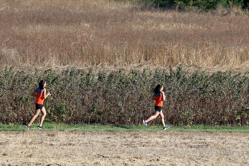 . Mid-Wach D girls cross country championships was held at Hollis Hills Farm in Fitchburg on Wednesday afternoon, October 31, 2018. Two Gardner High School runners run through the farm land during the race. SENTINEL & ENTERPRISE/JOHN LOVE