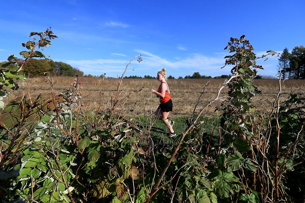 . Mid-Wach D girls cross country championships was held at Hollis Hills Farm in Fitchburg on Wednesday afternoon, October 31, 2018. A Gardner High School runner makes her way through the farm land during the race. SENTINEL & ENTERPRISE/JOHN LOVE