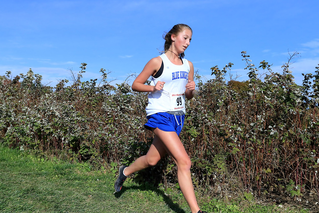 . Mid-Wach D girls cross country championships was held at Hollis Hills Farm in Fitchburg on Wednesday afternoon, October 31, 2018. Lunenburg High School runner Abby Rodriquenz competes in the race. SENTINEL & ENTERPRISE/JOHN LOVE
