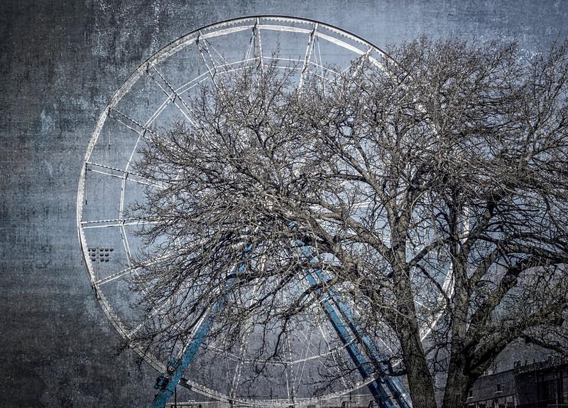 Davenport IA -Ferris Wheel & Tree-03097