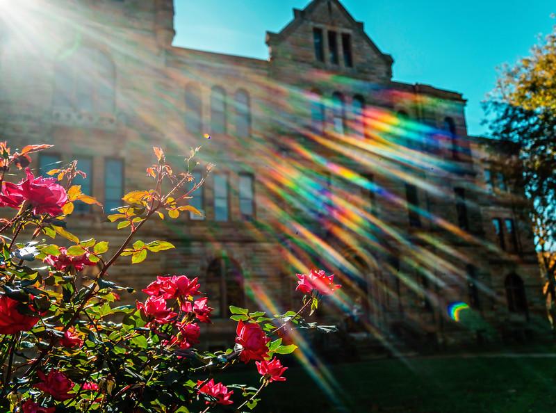 Galesburg - Rainbow-01054