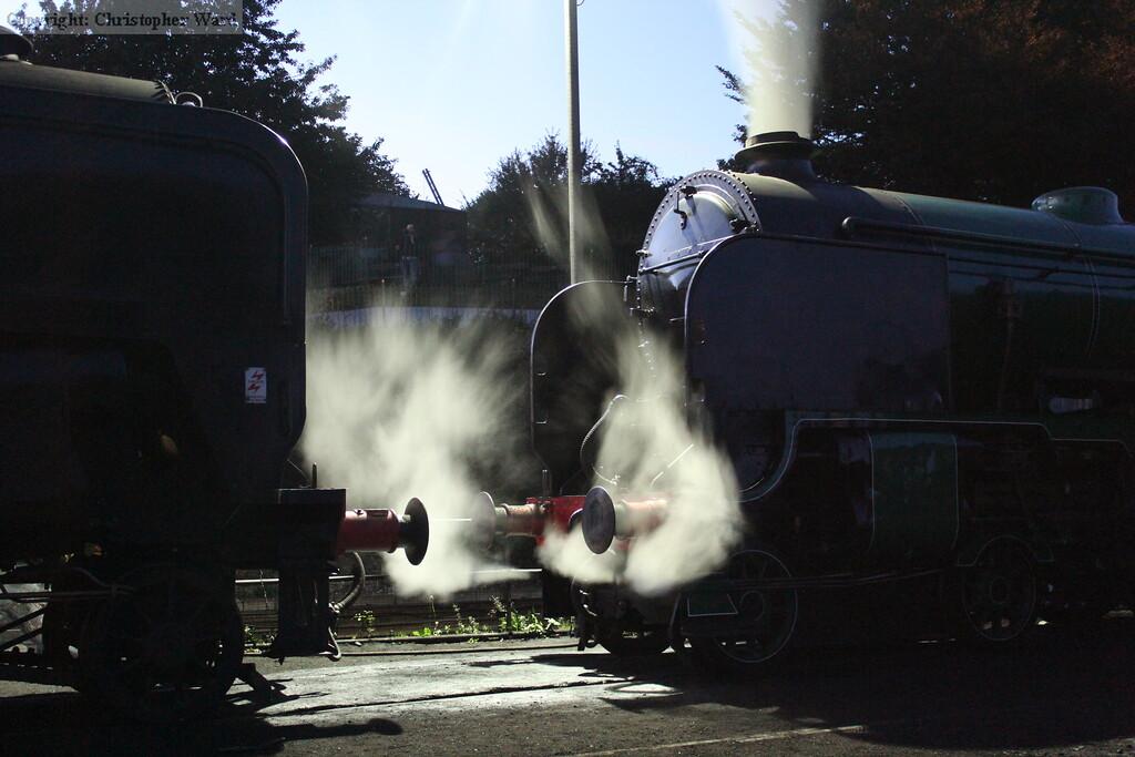 Cheltenham and 92212, nose to nose