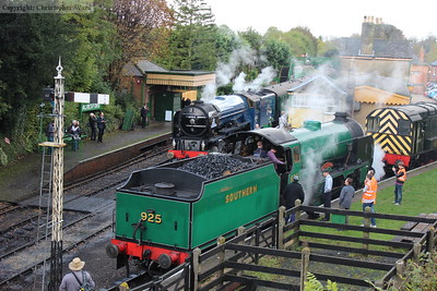 Tornado and Cheltenham rub shoulders at Alresford
