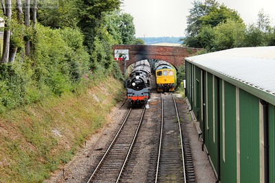 80078 drifts into the cutting to the north of Ropley