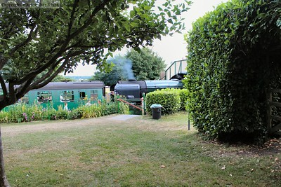 34053 glimpsed through the greenery