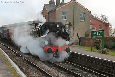 Leaking steam from seemingly every orifice, 41312 draws the freight into the station to run back to Alresford