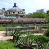 The Vegetable Garden, The Company's Garden, Cape Town