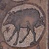 Mosaic, Byzantine temple, Petra