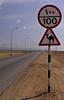 Camel Xing, Salalah-Mirbat road, Oman.  I next flew the long distance south to Salalah, not far from the Yemeni border.