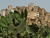 Hajjarah.  This little jewel of a fortress village is built on a peak of the Haraz, overlooking terraced farmland.