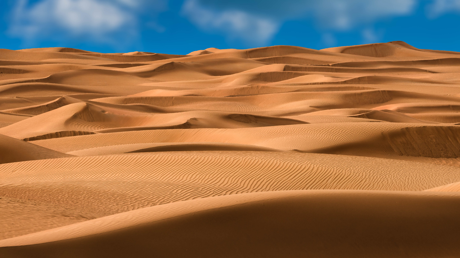 The dunes of the Dubai Desert