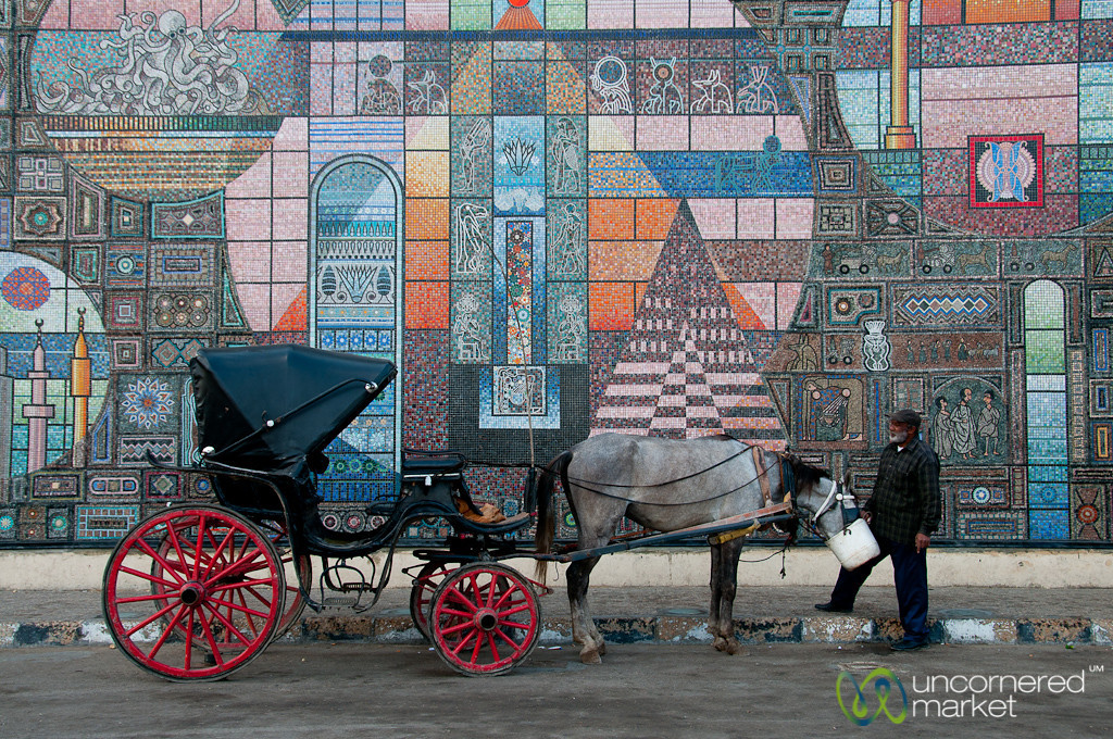 Horse and Carriage by Mosaic - Alexandria, Egypt