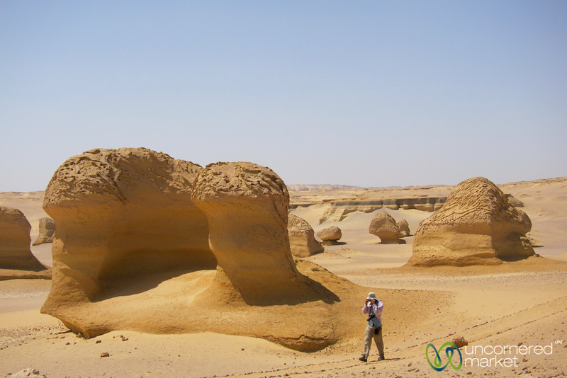 A Walk Through the Valley of the Whales - Fayoum, Egypt