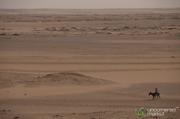 Shepherd on a Donkey in the Desert - Fayoum, Egypt