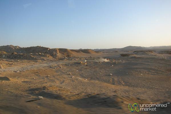 Desert Near Marsa Alam - El Quseir, Egypt